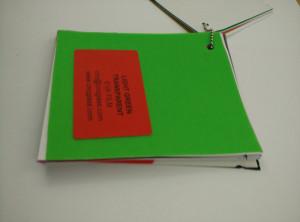 Light Green EVAVISION transparent EVA interlayer film for laminated safety glass (18)