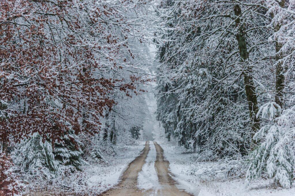 inspiring winter landscape