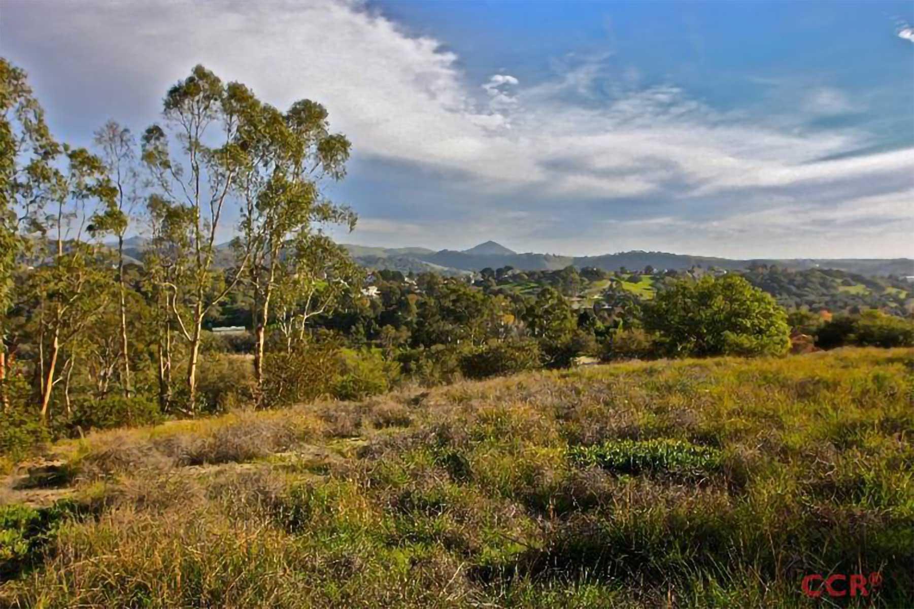 Enda Hills real estate property 3