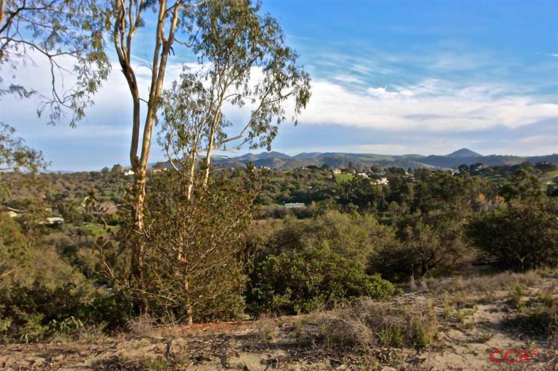 Enda Hills real estate property 6