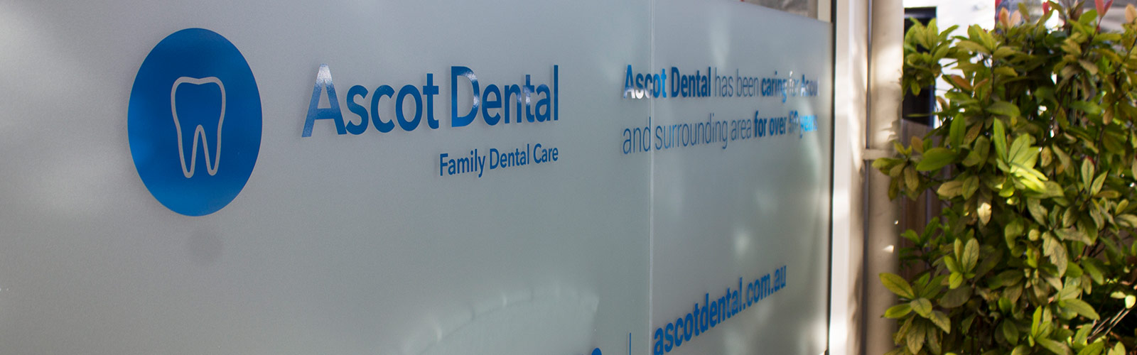Ascot Dental Signage