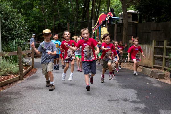 Zoo Atlanta Summer Camp
