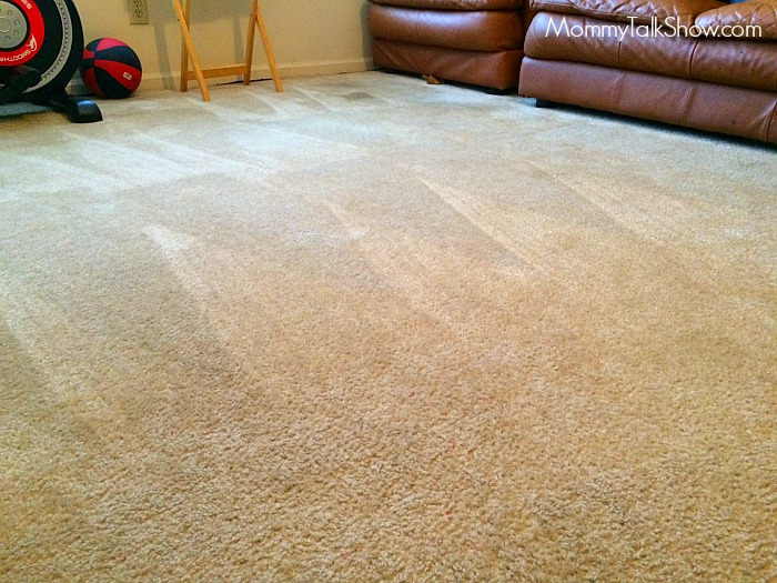 Carpet Lines