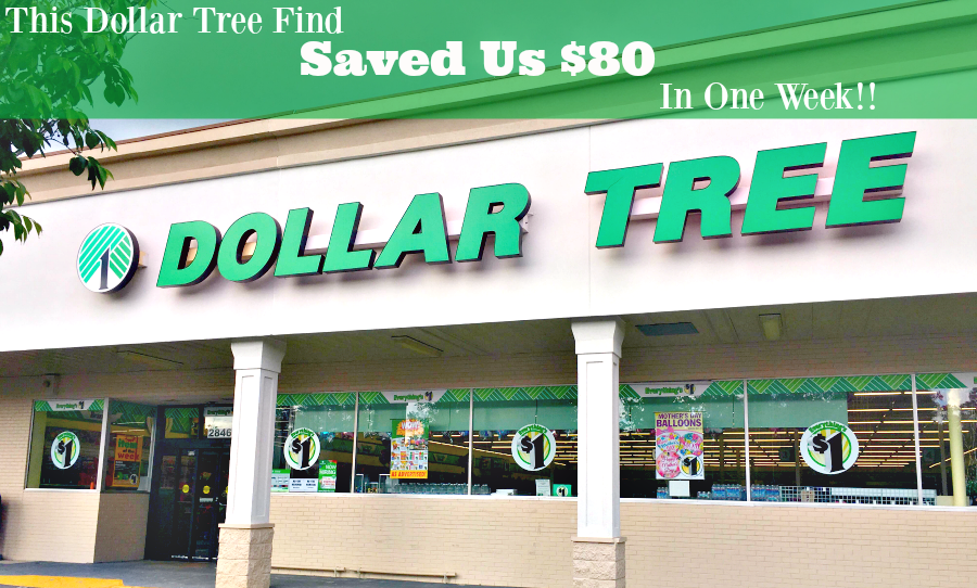 This Dollar Tree Find Saved Us $80 in One Week!
