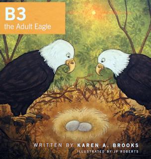 B3 the Adult Eagle