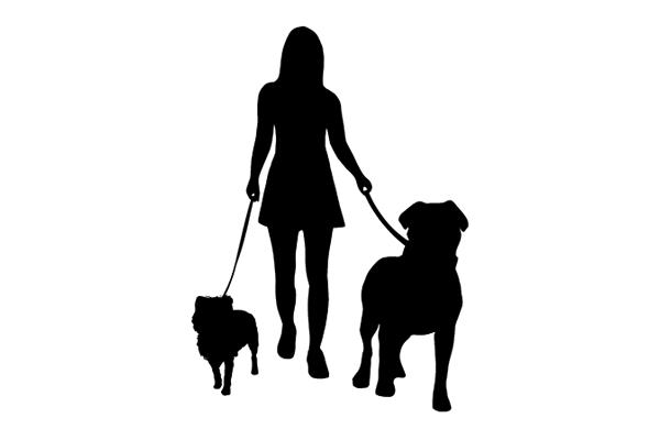 Logo for Millie & Monster