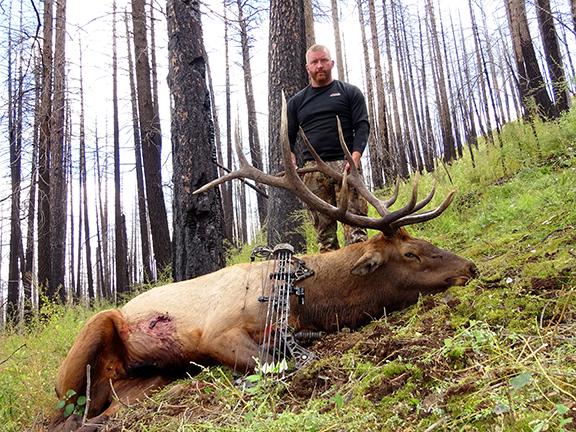 2014 Archery Elk 011