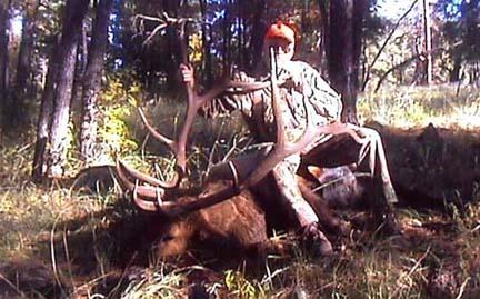 Fred-Kell 367 6x7 gila wild