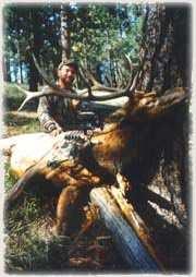 Jeff Murray MN 6x6 Bull Gila Wilderness