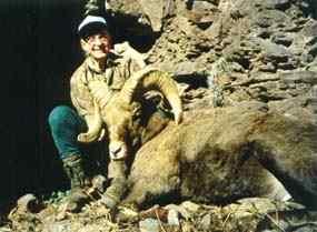 bill pritchard CA bighorn sheep