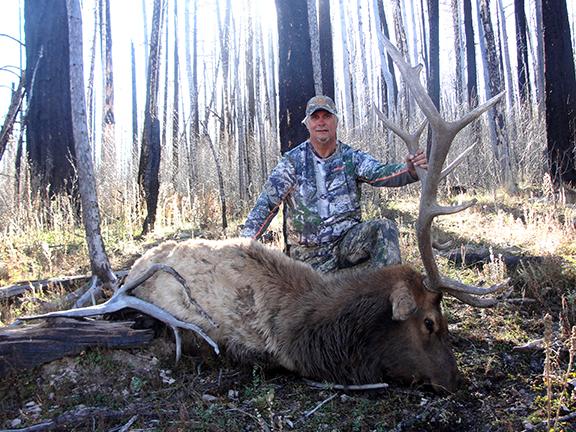 Mark Johncock, MI Rifle bull
