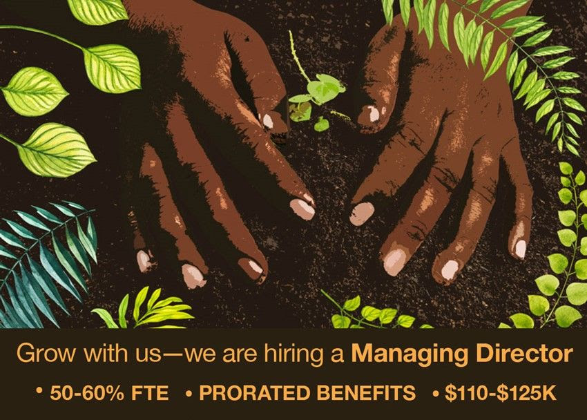 Grow with us – LREP is Hiring a Managing Director