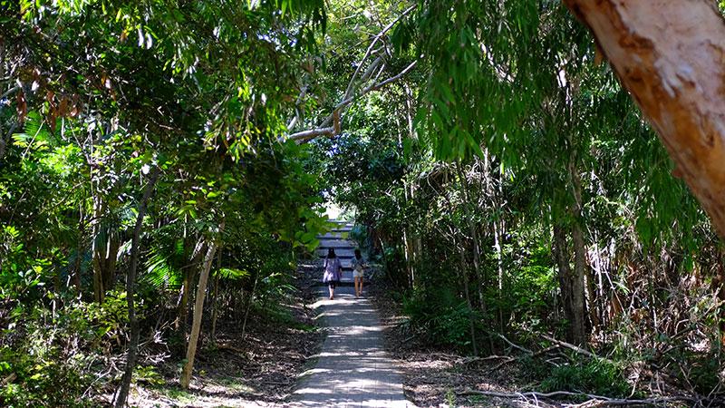 The path to Wategos. Credit: Chris Ashton
