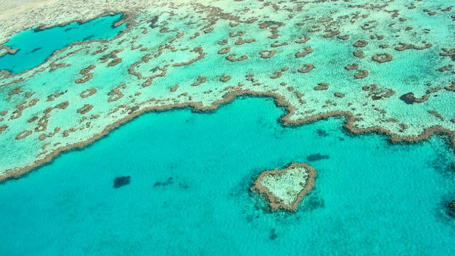Aerial view of Heart Reef. Credit: Tourism Whitsundays
