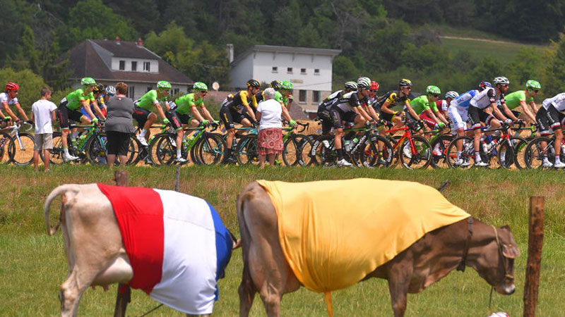 Tour de France passing through the French countryside. Credit: Tim de Waele / Supplied.