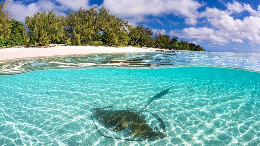 Heron Island. Credit: Tourism & Events Queensland