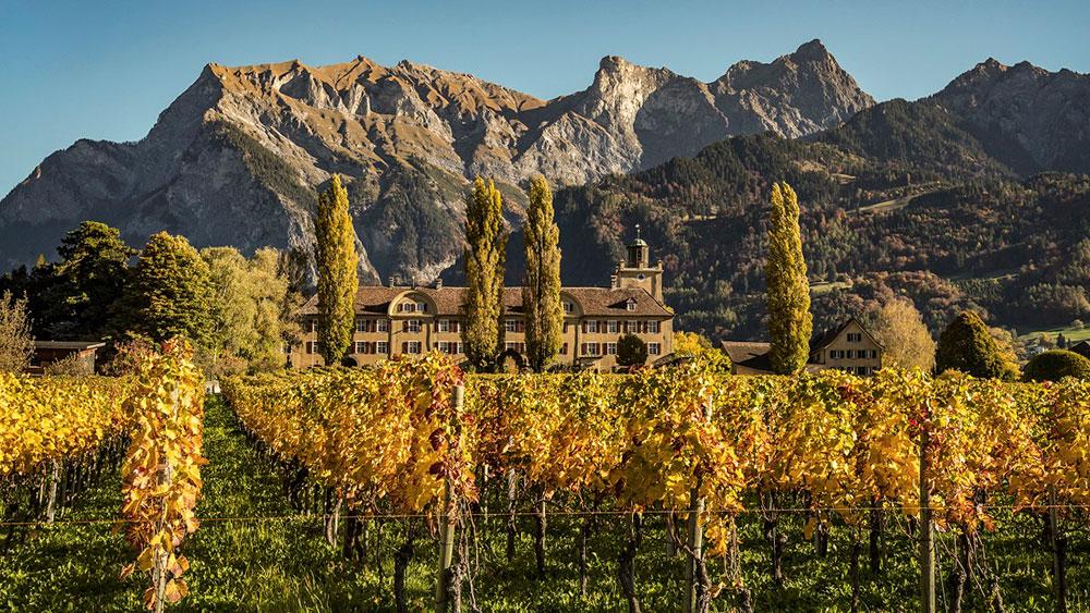 Winery Schloss Salenegg, Graubünden, Switzerland