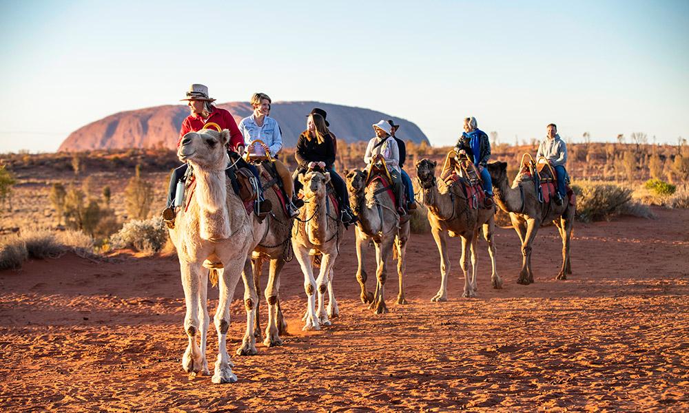 A camel caravan near Uluru. Credit: Tourism Northern Territory