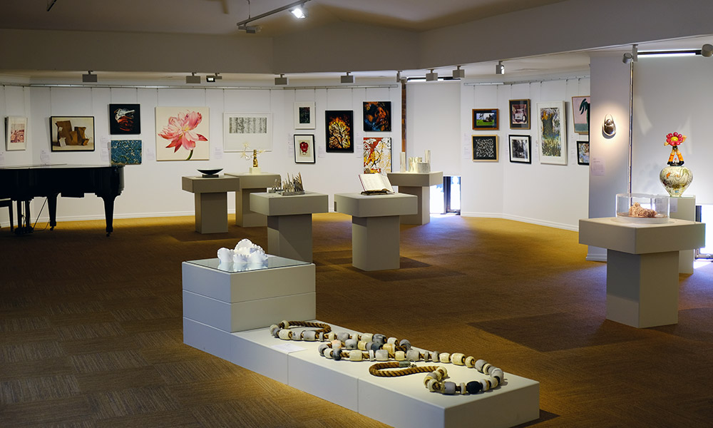 Stanthorpe Regional Art Prize display. Credit: Chris Ashton