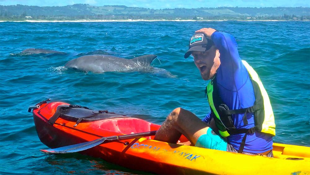 Kayaking in Byron Bay. Credit: Go Sea Kayaks