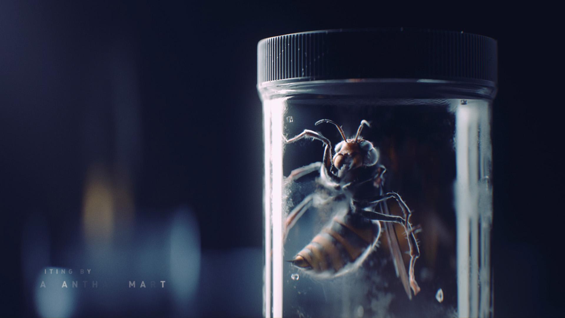 hornet_glass