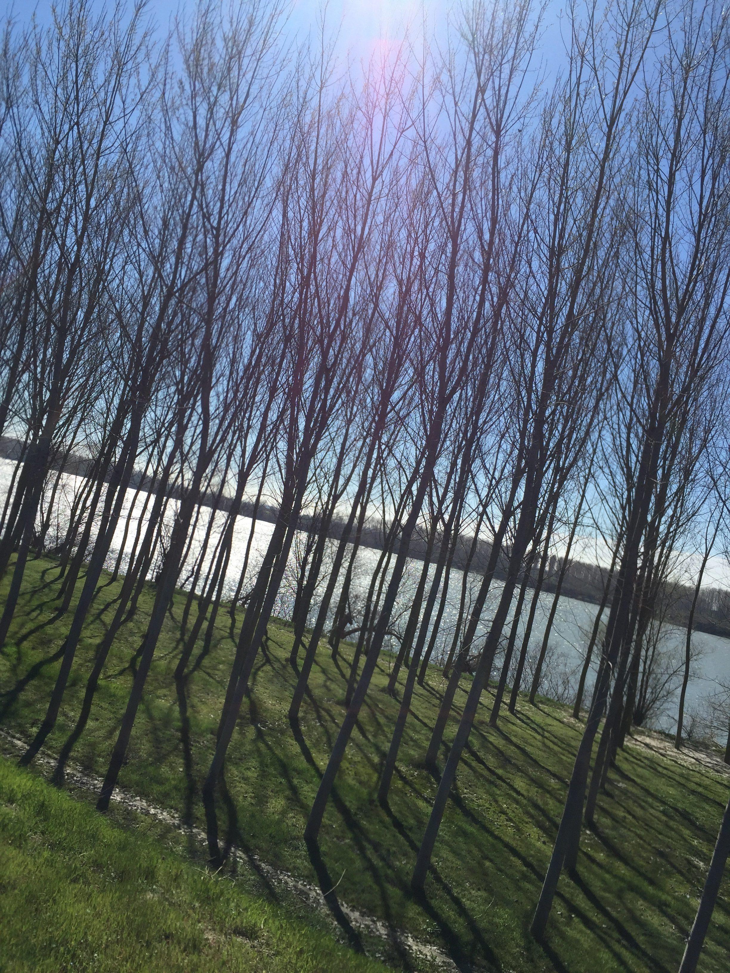 italiainpiega-pieghe meravigliose-itinerari-moto-pianura-padana-argine sinistro del fiume po-calto 1