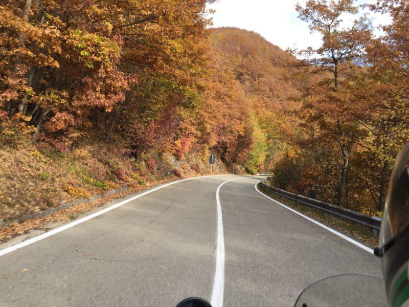 italiainpiega-pieghe meravigliose-itinerari moto nord italia-passo delle radici-SP324