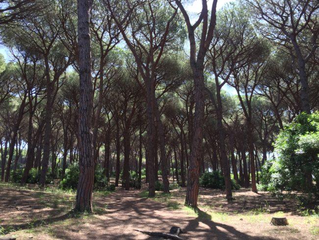 italiainpiega-pieghe meravigliose-itinerari moto centro italia-argentario-la feniglia