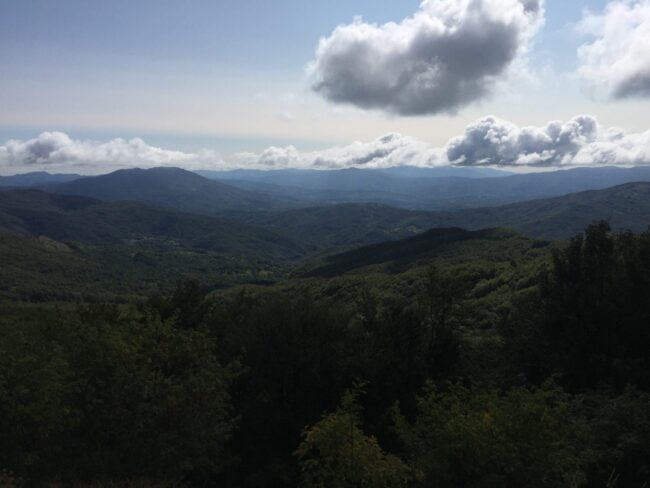 italiainpiega-pieghe meravigliose-itinerari moto nord italia-passo del tomarlo 2