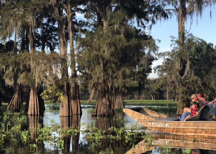 airboat swamp tours atchafalaya
