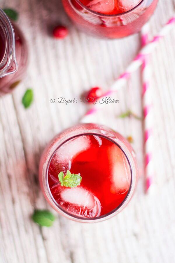 Cranberry Mojito Photography