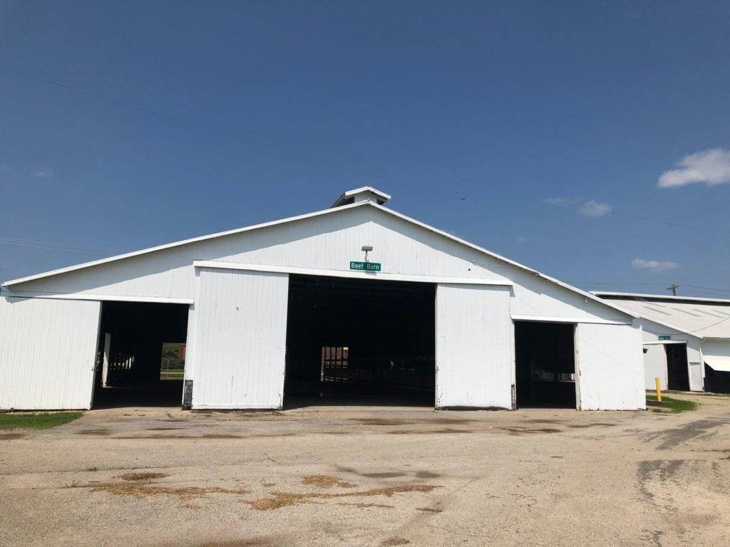 Open Class Sheep Barn