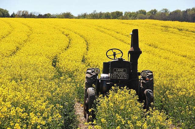 tractorinfield