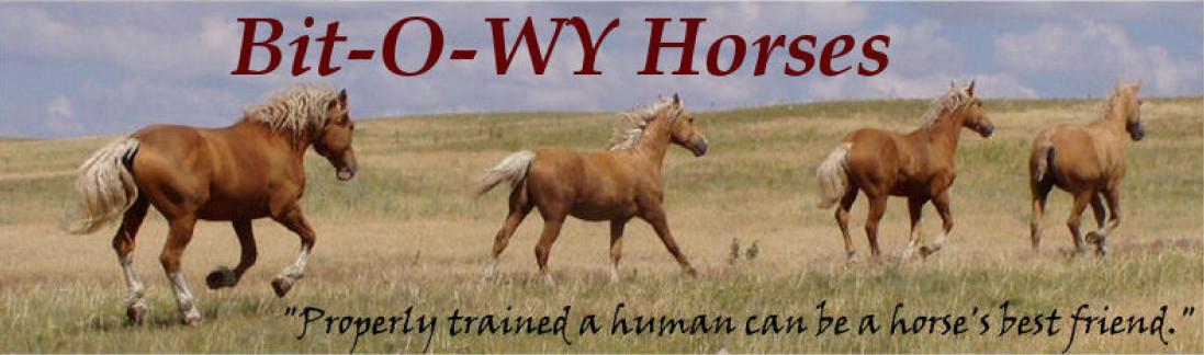 Bit-O-WY Horses