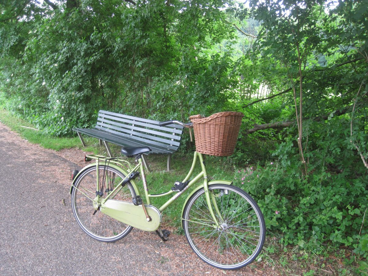 cycling in the amsterdamse bos