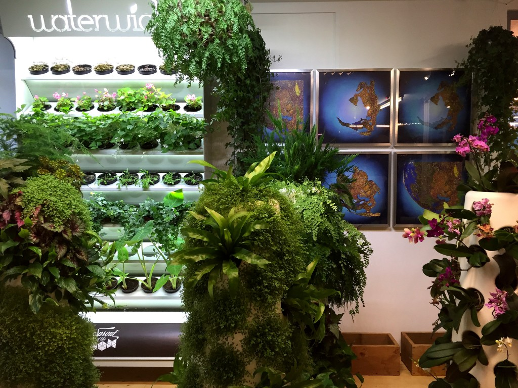 Mediamatic has a big greenhouse and all kinds of innovative projects, exhibitions and events happening all the time. One of Amsterdam's secrets!