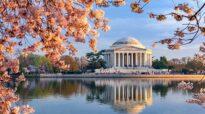 Destination Idea: Washington D.C.