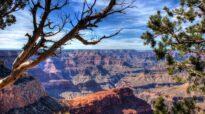 Destination Idea: The Grand Canyon