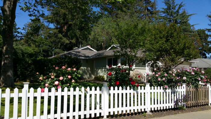 Garcia built home with roses on Lester near Live Oak Manor Park