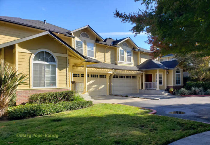 Los Gatos duet homes facing Lark Avenue