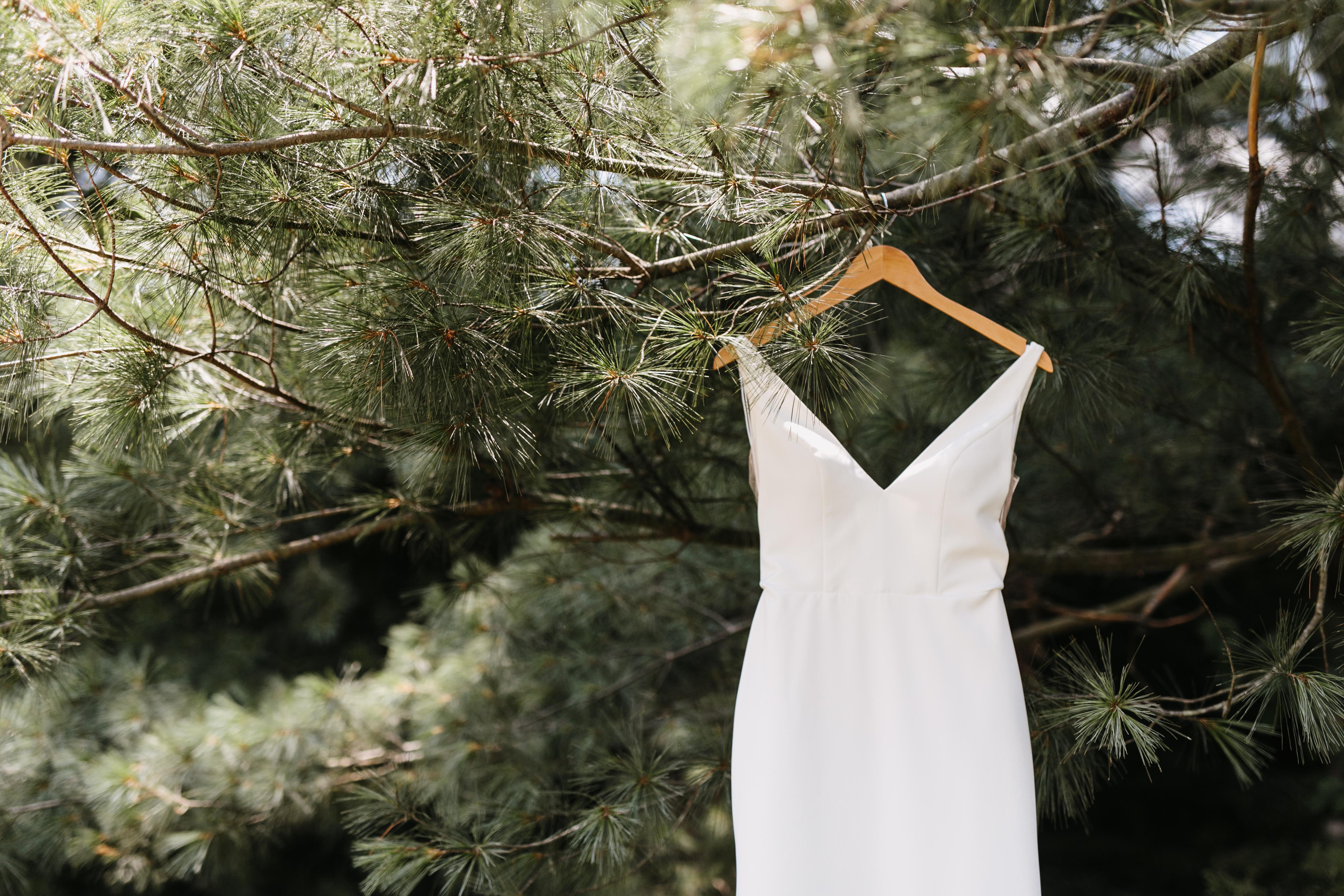 wedding gown on hanger in tree