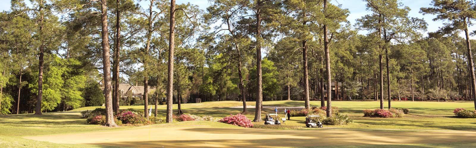 South Georgia Golf