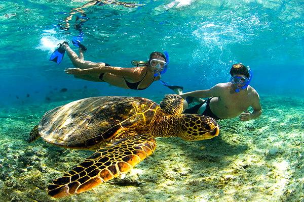 Kahaluu-Beach-Park-Kona-Hawaii-Central-Pacific-Ocean-2