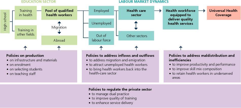 Health Labour Market (HLM) framework as basis for health human resources data