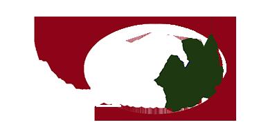 Cedar Hill Advisors – Financial Advisory Firm –