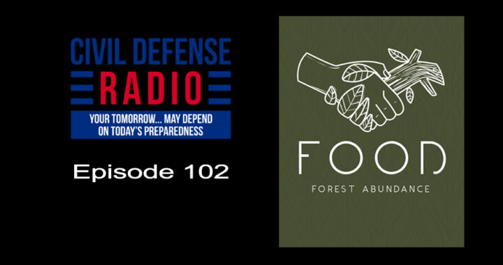 Food Forest Abundance