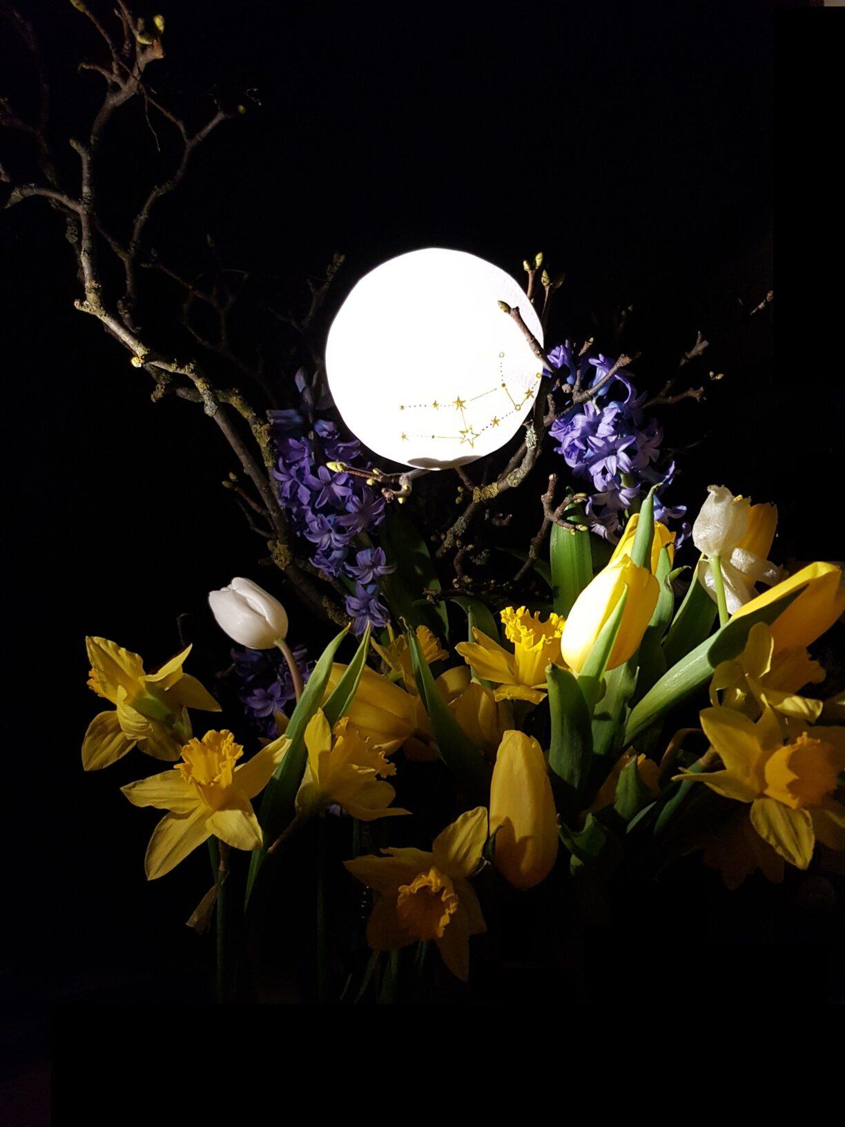 March Full Moon, digital image for Lunascope Newsletter 2018