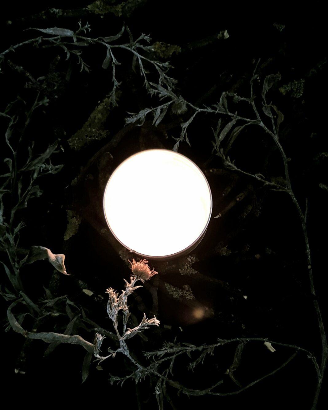 Full Moon November, digital image for Lunascope Newsletter 2018