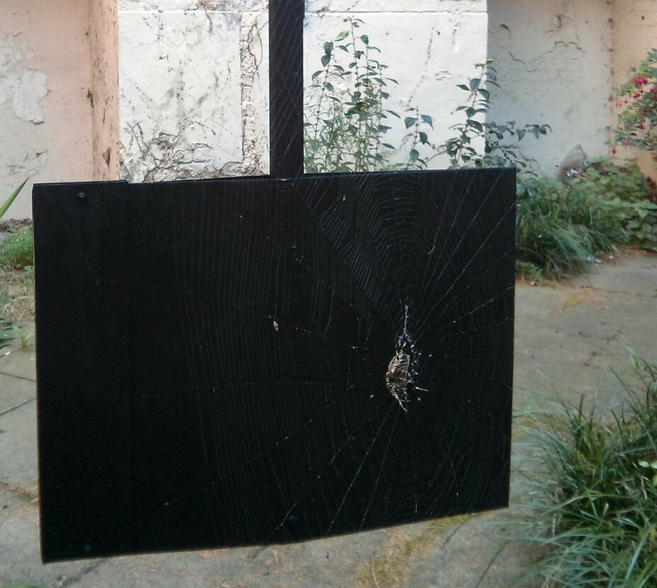 OutGrown, spider, reclaimed estate agent signs, acrylic, 2014.