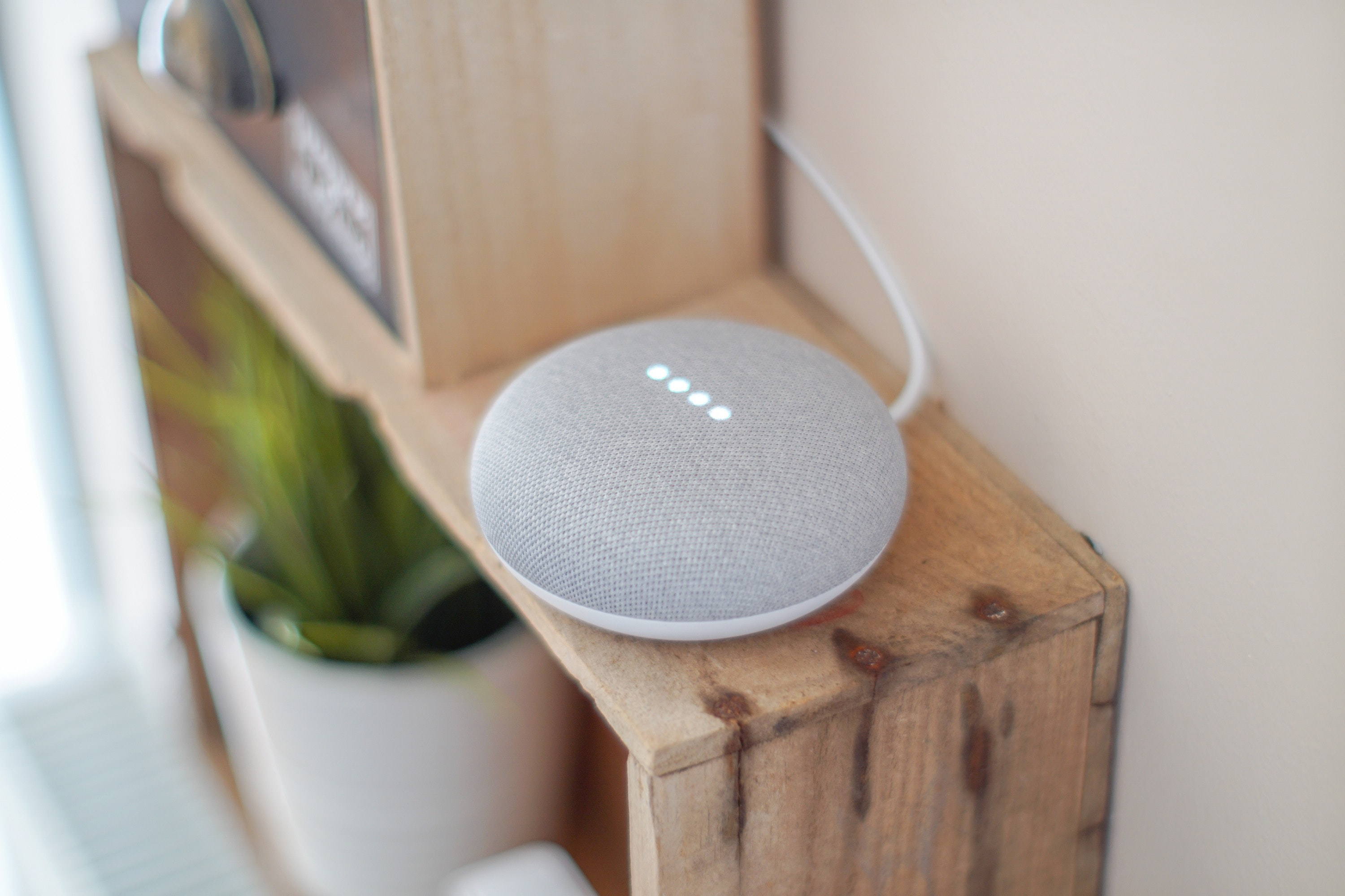 Voice Shopping with Google Home